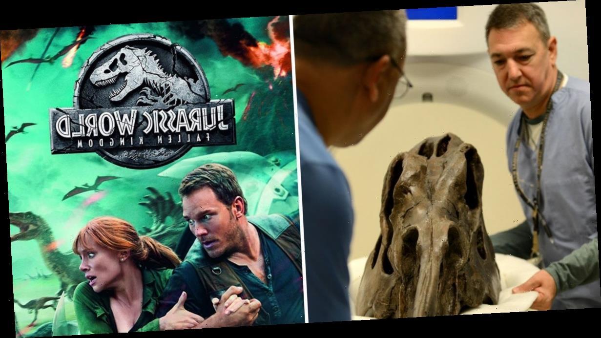 Jurassic Park breakthrough as DNA found preserved in dinosaur skull
