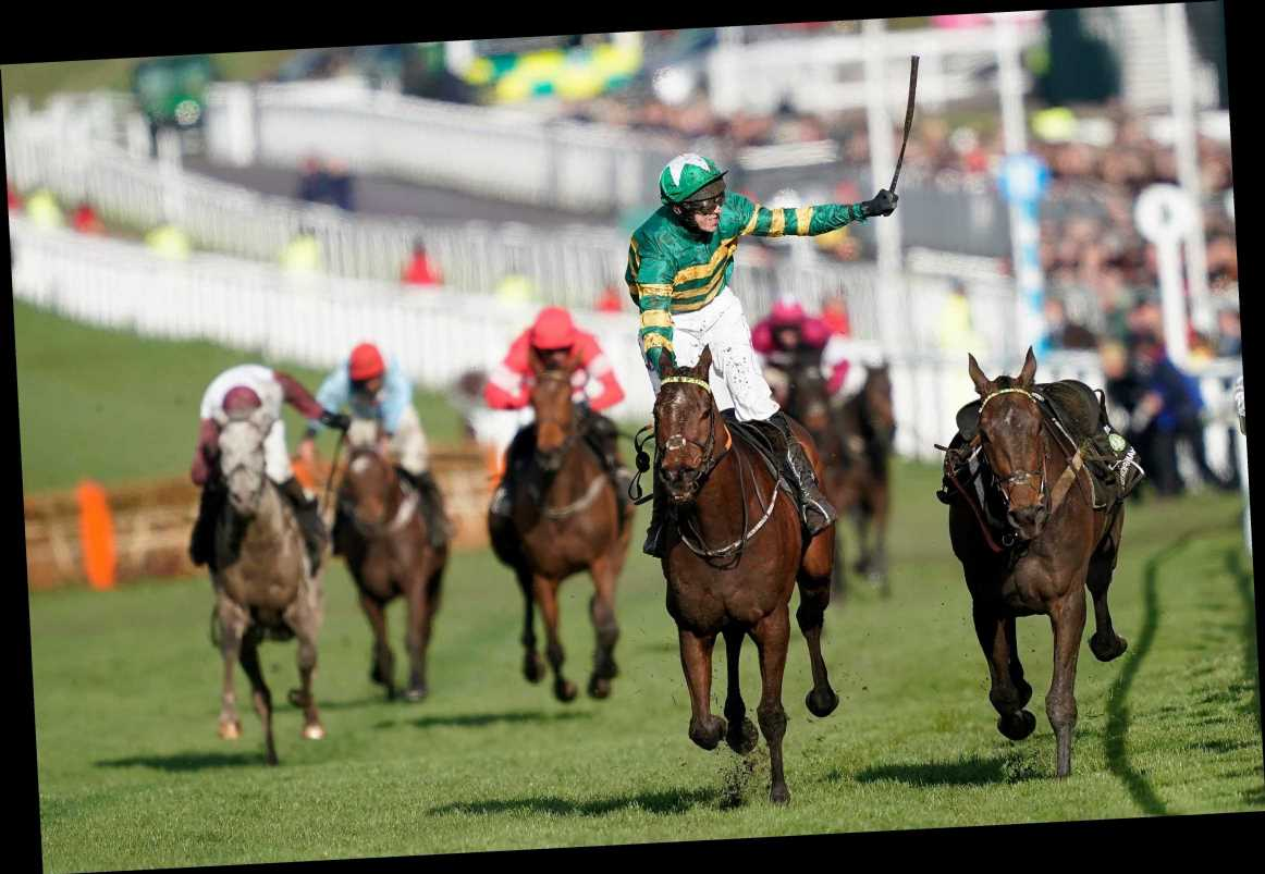 Cheltenham Festival racing tips: All you need for the Champion Hurdle at Cheltenham on Tuesday