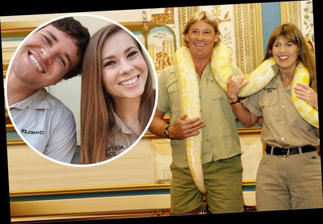 Steve Irwin will be honored at daughter Bindi's wedding