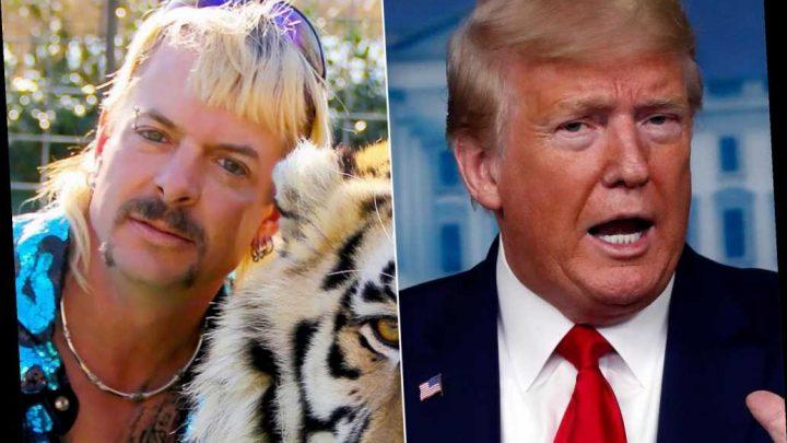 Trump says he will 'take a look' at 'Tiger King' Joe Exotic pardon