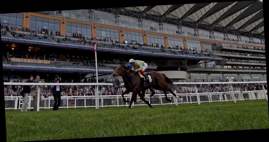 Hardwicke stakes betting tips csgo betting matches