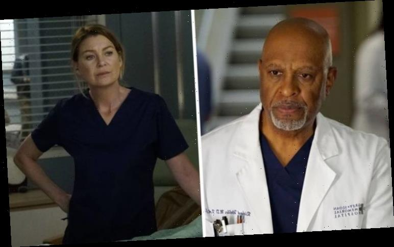 Grey's Anatomy season 17: When will Grey's Anatomy return? Start date confirmed