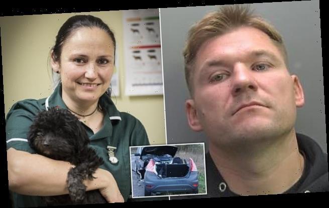 Driver who killed veterinary nurse, 46, in head-on crash flees UK