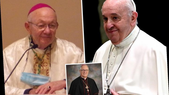 American bishops slam Pope Francis' comment backing same-sex civil unions as 'clearly contradicting' Catholic teaching