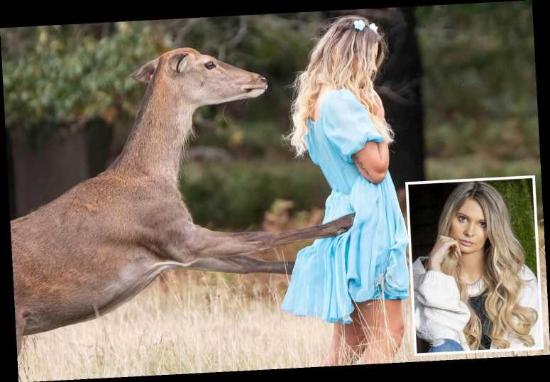 Terrified woman attacked by deer while posing for photoshoot in busy park