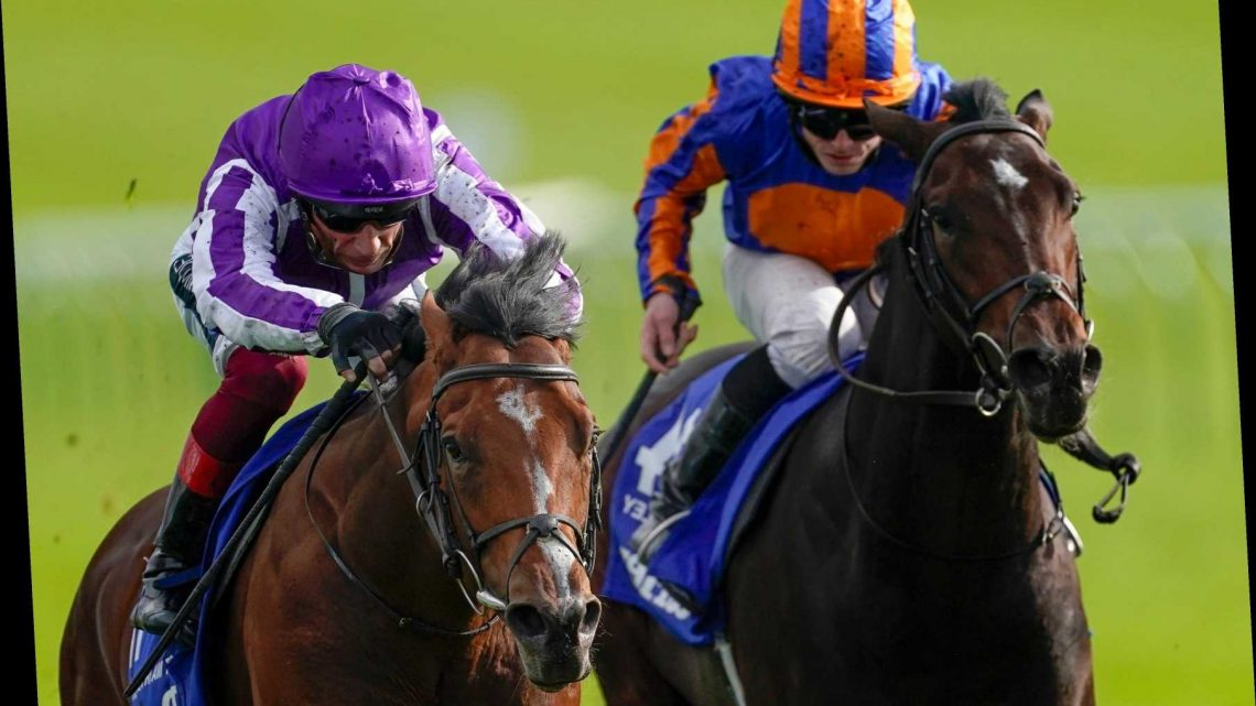 Newmarket Races: St Mark's Basilica lands red-hot Dewhurst for Aidan O'Brien after miserable 24 hours