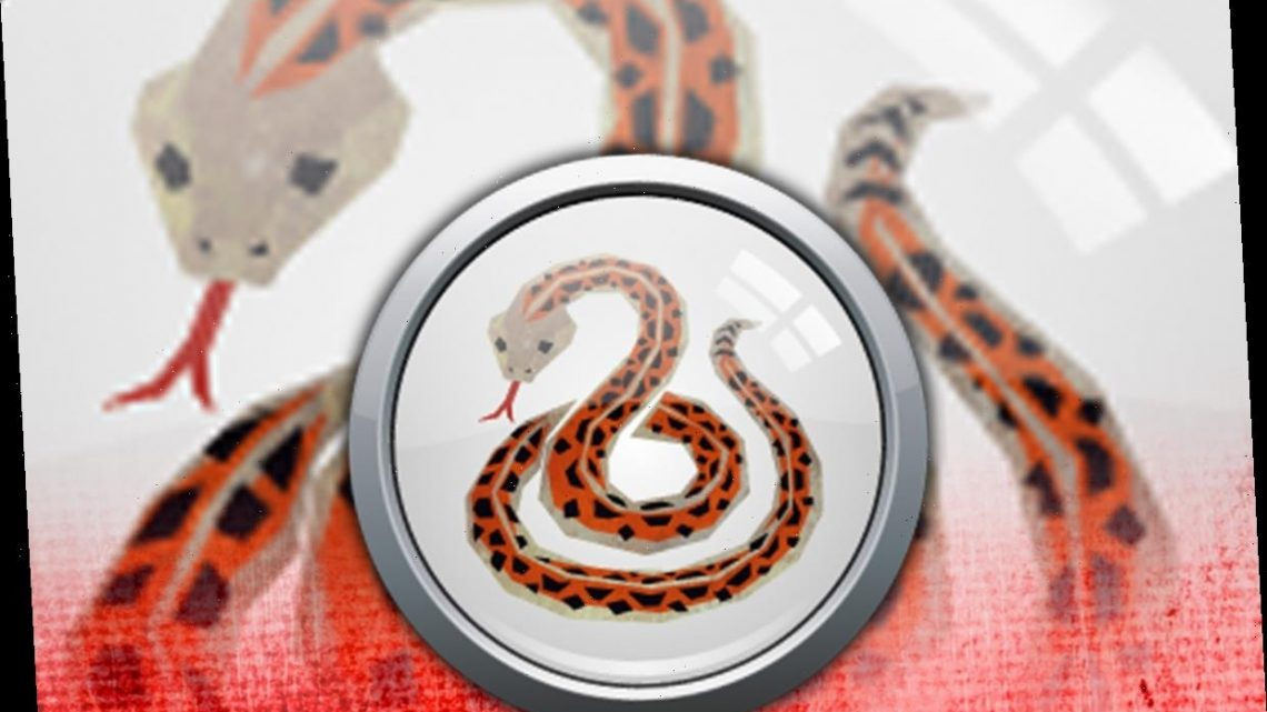Year of the Snake: Traits and characteristics of the Chinese Horoscope