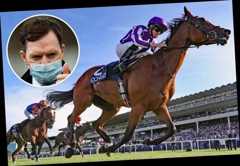 Champions Day: Aidan O'Brien hoping for Magical end to season as he takes aim at Ascot with powerful squad