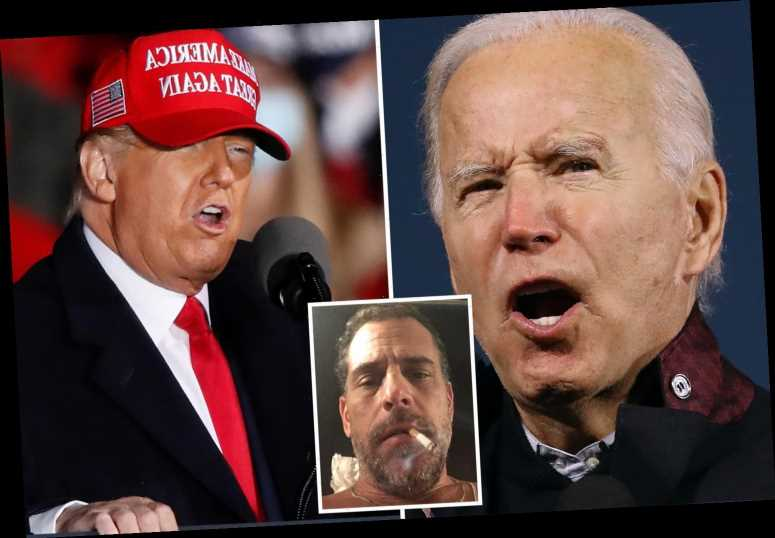 Trump brands Biden family a 'criminal enterprise' and says Hunter scandal makes it 'impossible' for Joe to be president