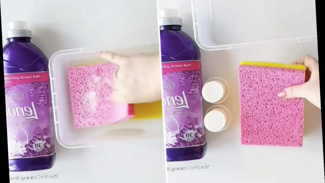 Cleaning fanatic shares easy hack to make washing smell fresh and people say it's BETTER than using tumble dryer sheets