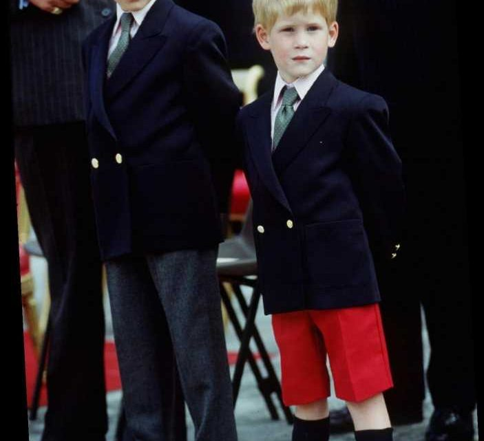 Inside the Moment Prince William and Prince Harry's Personalities Flipped as Kids