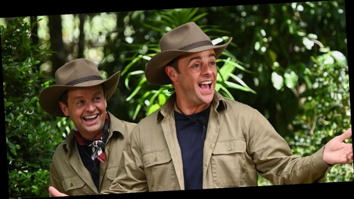 I'm A Celebrity fans beg ITV not to cancel show amid lockdown woes
