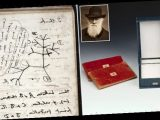 Charles Darwin's notepads STOLEN from Cambridge University library