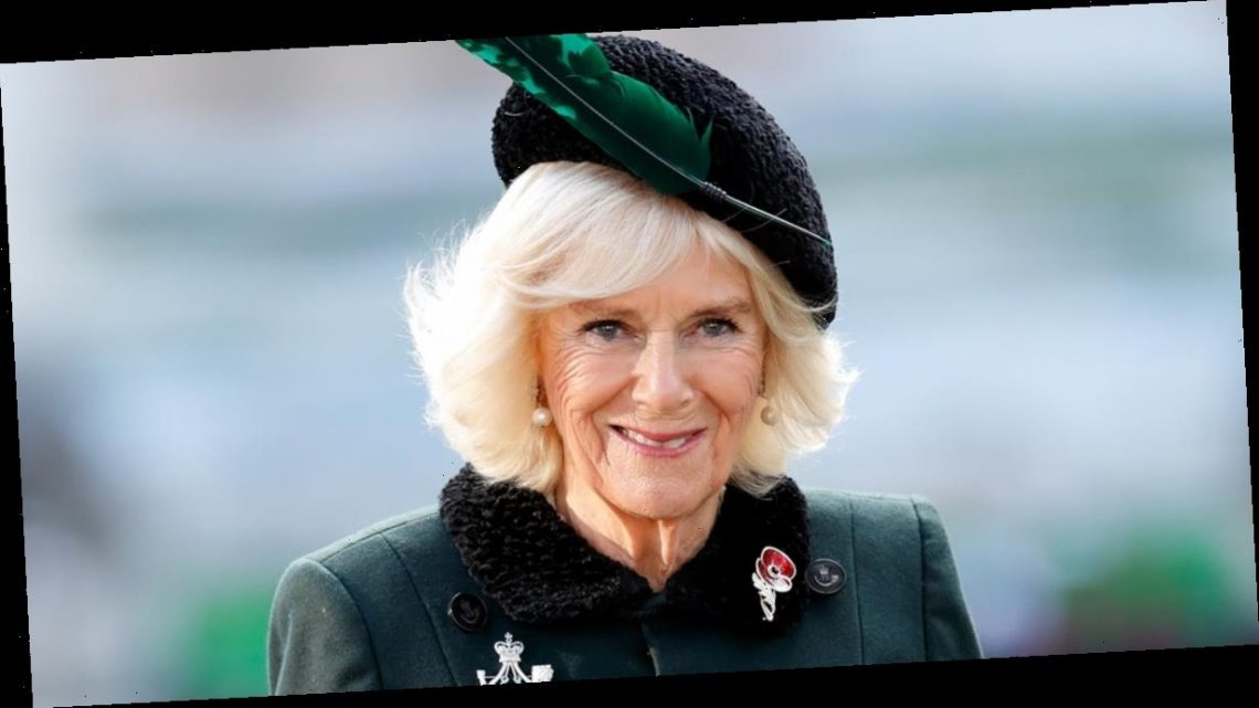 Duchess Camilla May Watch Season 4 of The Crown With a Tall Glass of Red Wine in Hand