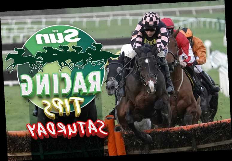 Horse racing tips tomorrow: Templegate's Cheltenham Nap and next best on a big Saturday of action