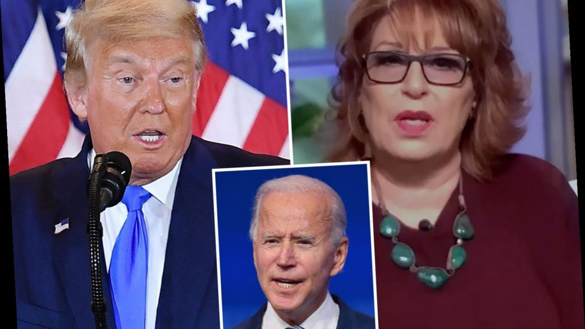 The View's Joy Behar says Trump is so 'EVIL' he wants Covid crisis to get worse so deaths left in Biden's lap