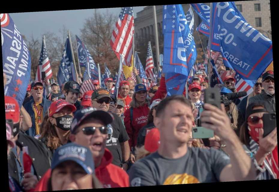 Face-to-Maskless-Face with the MAGA March on Washington