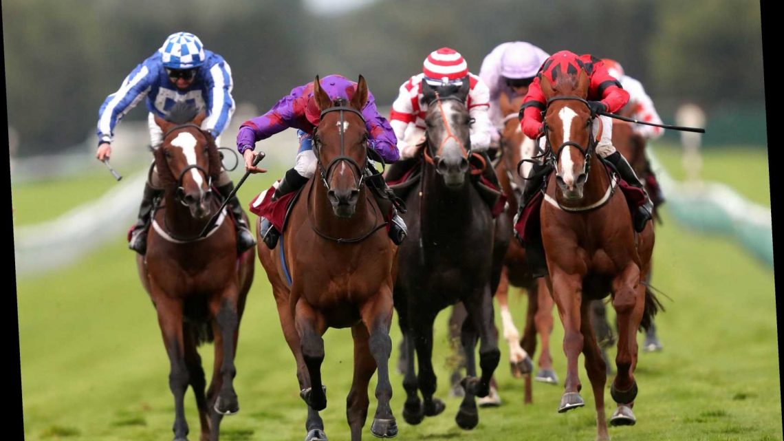 Haydock – Betfair Chase: Bet a tenner on the first race and get a free £10 bet for all six remaining races