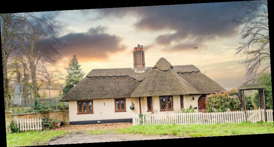 Picturesque three bedroom thatched cottage up for sale for just £375,000 – and it backs onto a TIGER enclosure