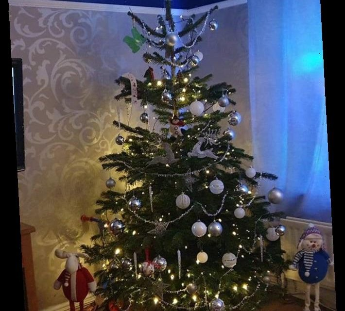 Mum shows off real 7ft Christmas tree she got for just £10 from Home Bargains & they're £75 cheaper than John Lewis