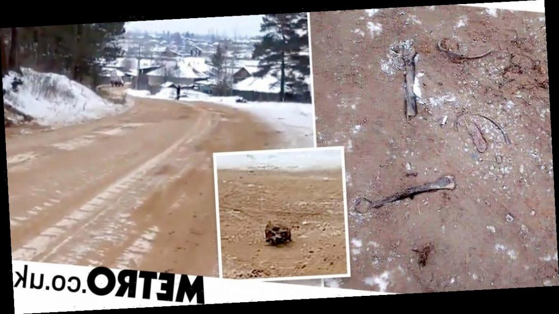 Human bones mixed with sand used to de-ice road in Russia