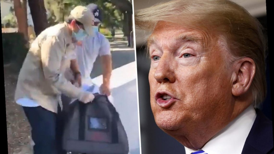 Trump shares video of 'mail-in ballots being collected AFTER election day' as he repeats unfounded claims he won