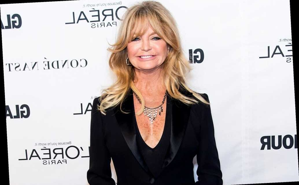 Goldie Hawn Teases Status of First Wives Club Reunion Film: 'We're Inching Our Way Towards It'