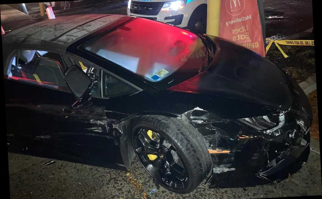 Bumbling thief steals $240K Lamborghini, crashes hours later