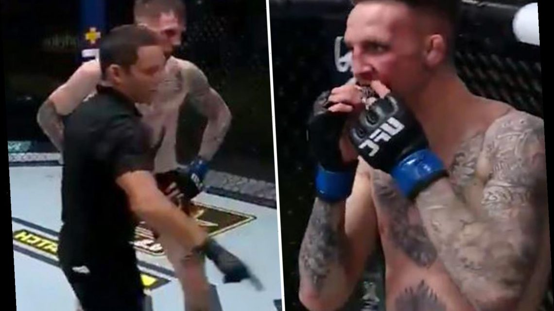 Watch bizarre moment UFC coaches climb under cage to retrieve GUMSHIELD after it flies out mid-fight