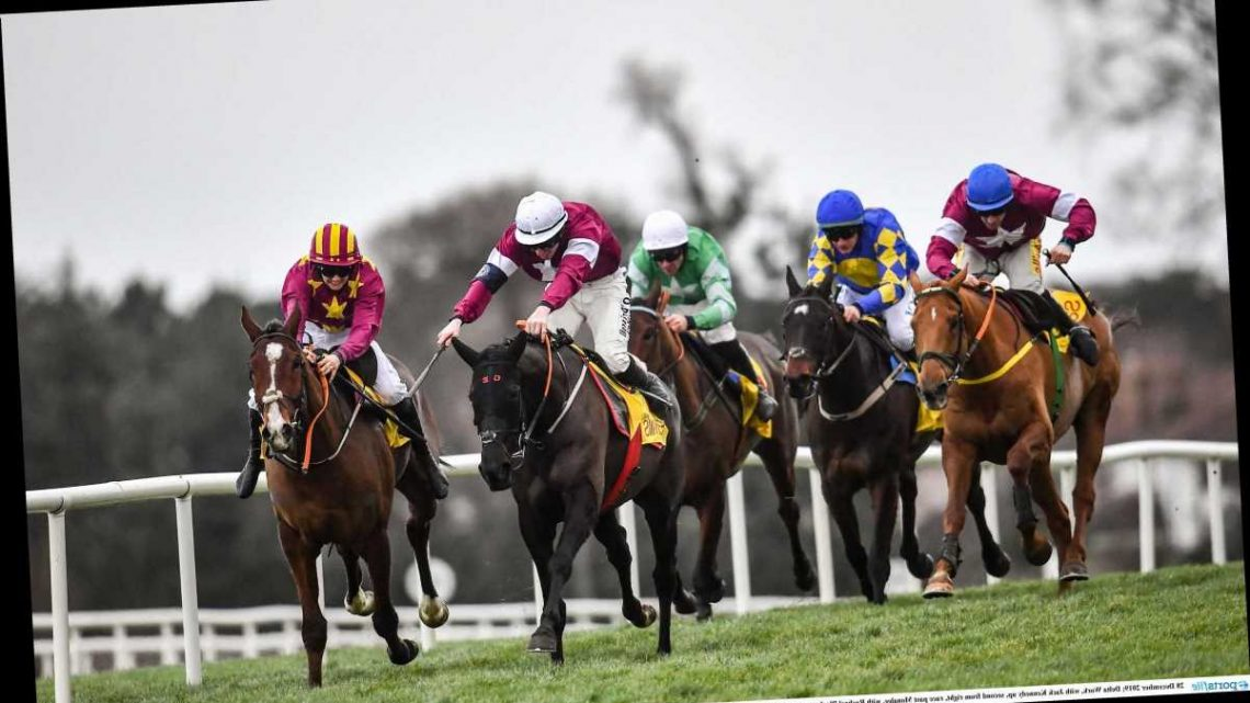 Leopardstown racing tips: Templegate's pinstickers guide to the Savills Chase on Monday – with an 8-1 bet