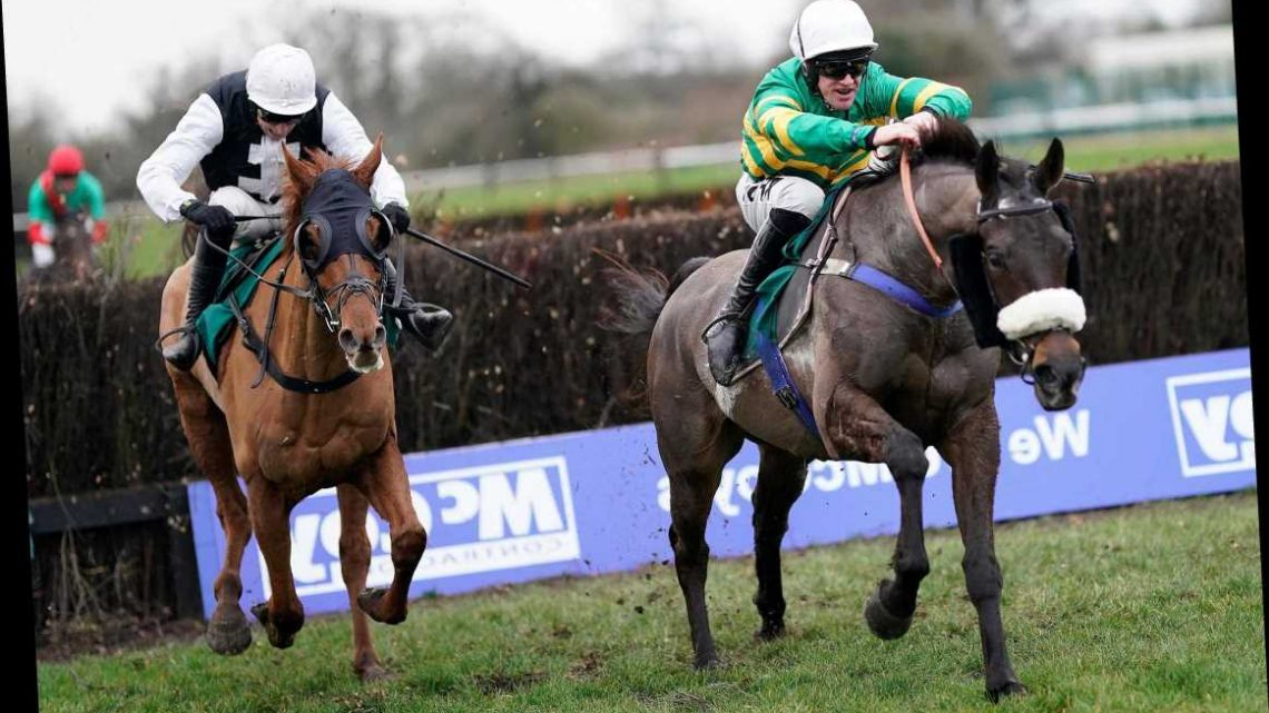 Horse racing tips TODAY: Warwick Nap can end 2020 with bang and take advantage of a golden opportunity