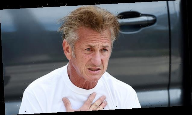 Sean Penn's 'Bedhead' Hair on MSNBC's Morning Joe Has Fans Losing It – 'His Hair Is All Of Us in 2020′