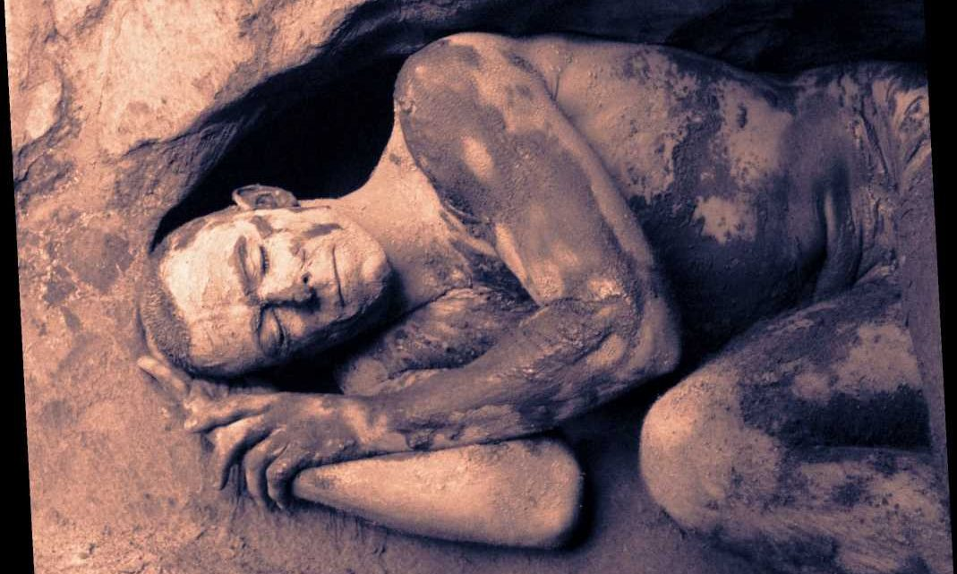 Humans Used to Be Able to Hibernate, Evidence Suggests
