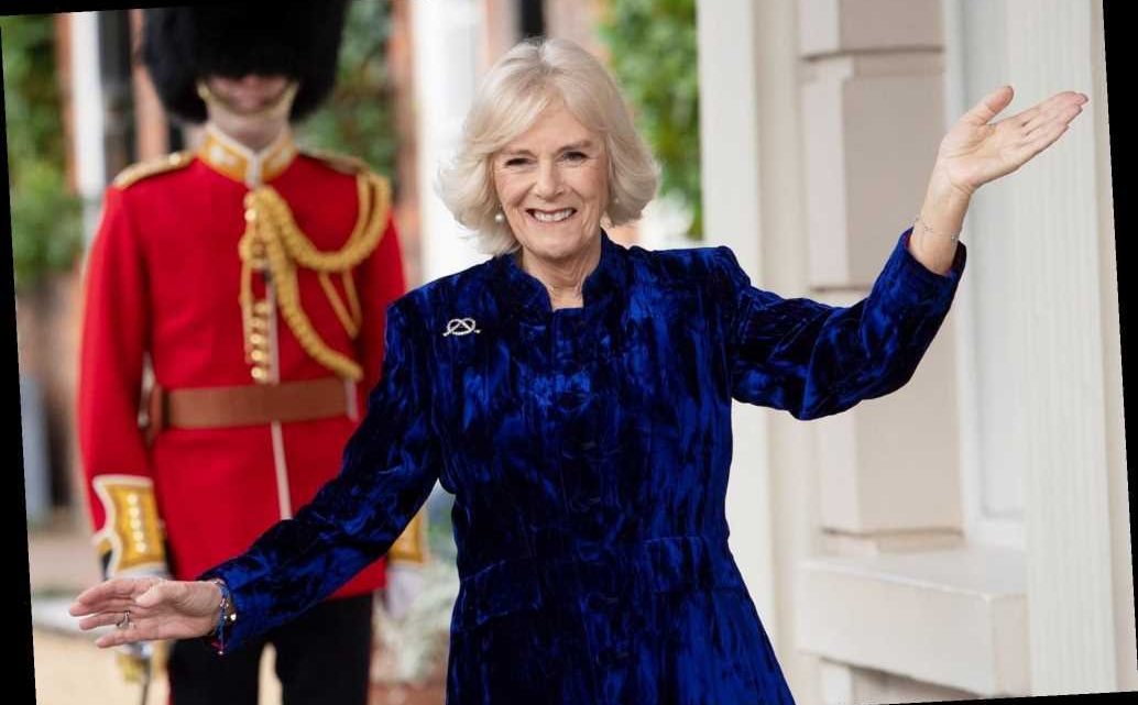 Camilla, Duchess of Cornwall Surprises Cancer Hero — Watch Her Shocked Reaction!