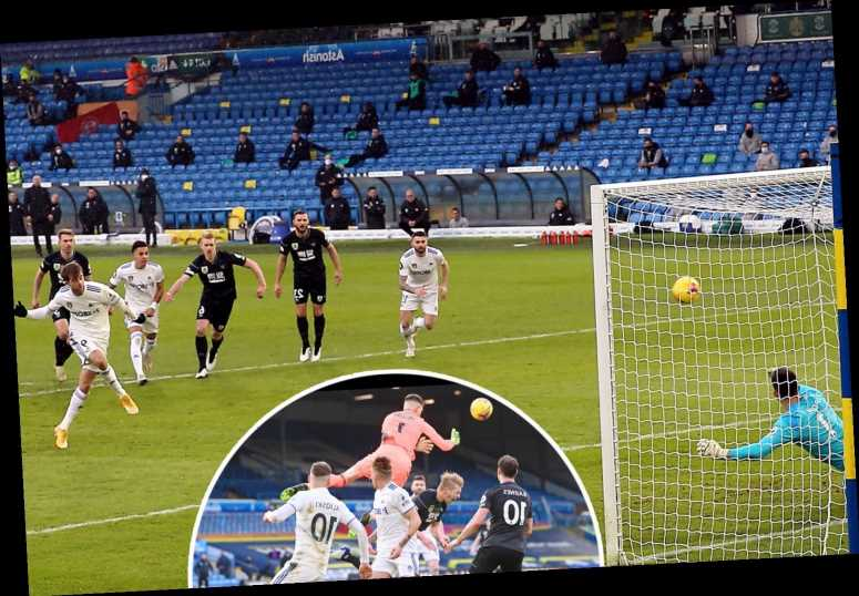 Leeds 1 Burnley 0: Patrick Bamford penalty secures win as Ashley Barnes equaliser controversially ruled out