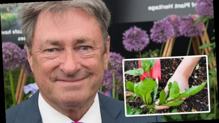 Alan Titchmarsh warns gardeners about 'nuisance' weed found at plants from garden centres