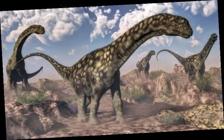 Dinosaur discovery: Fossils found in Argentina may have belonged to largest land animal