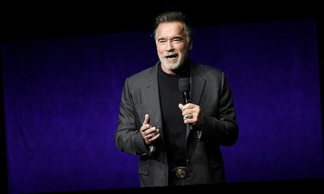 Arnold Schwarzenegger Terminates Donald Trump: 'You're As Irrelevant As An Old Tweet' — Watch