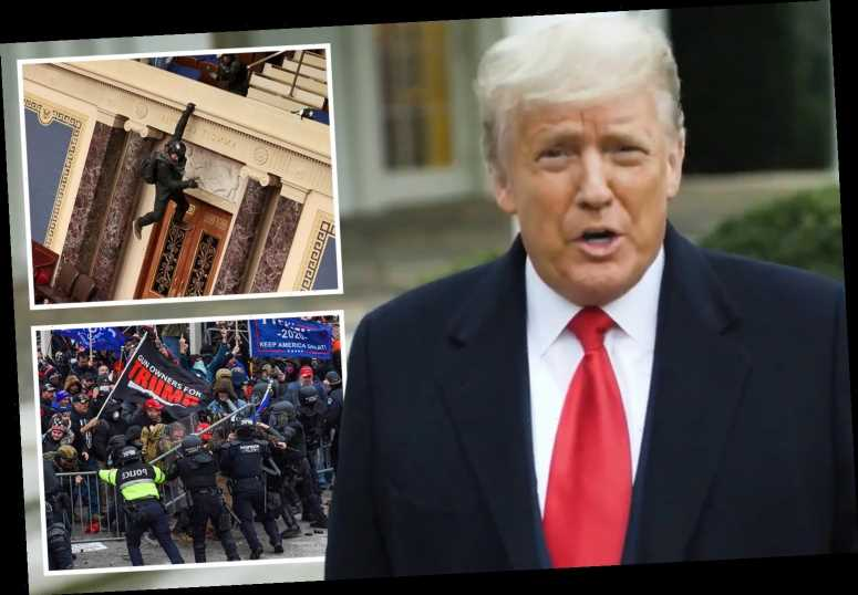 Trump tells Capitol-storming mob 'election was stolen from us' but urges them to 'go home in peace'