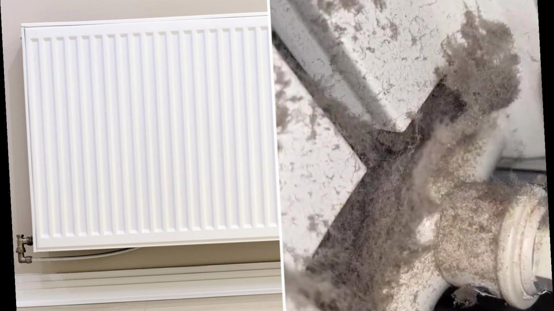 Cleaning fan reveals the hidden dirt lurking in radiators – and it'll make you want to scrub yours immediately