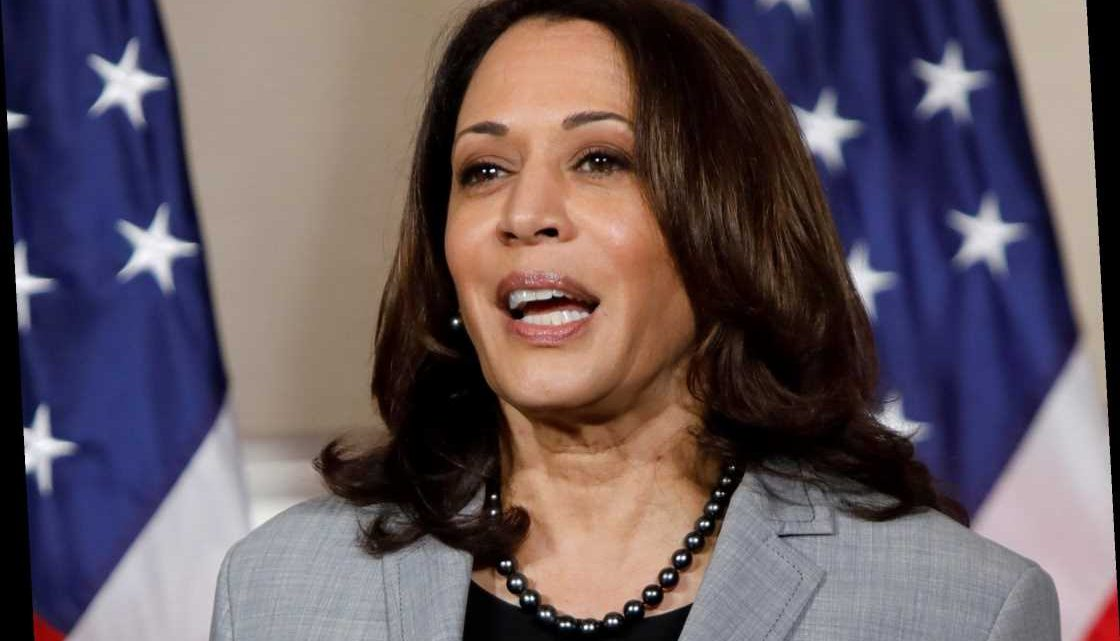 Is Kamala Harris the first woman Vice President? – The Sun