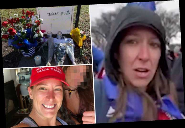 Woman shot at Capitol – Ashli Babbitt was an Obama voter before turning to Donald Trump over hatred of Hillary Clinton