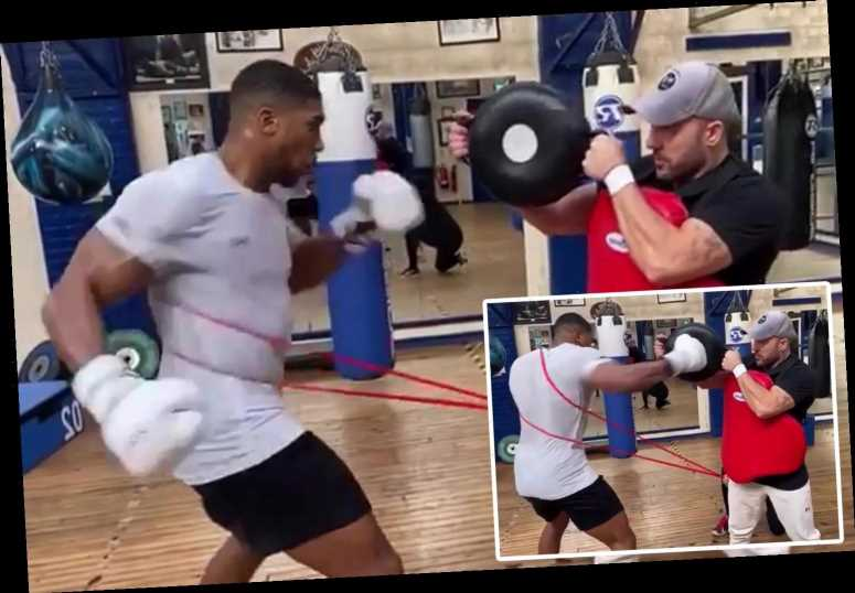 Anthony Joshua practises new left hook he aims to KO Tyson Fury with 'instead of uppercut' as contract talks rumble on