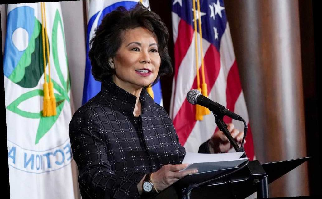 Elaine Chao becomes first Trump cabinet member to resign after Capitol siege: report