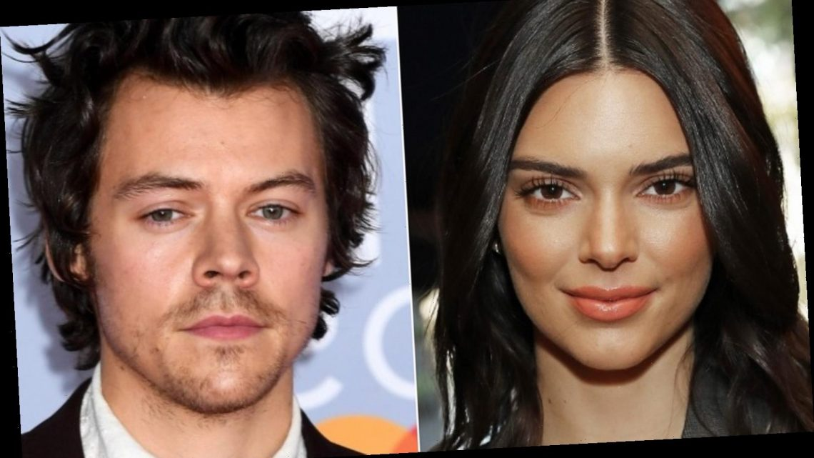 The Truth About Kendall Jenner And Harry Styles' Relationship