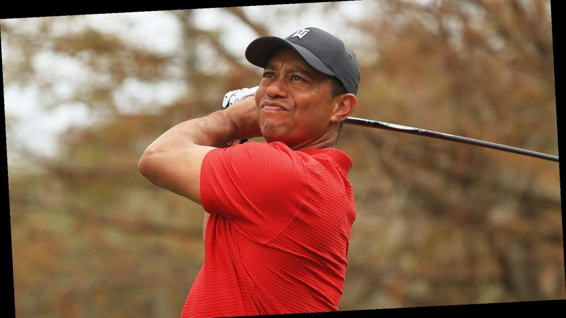 The Untold Truth Of Tiger Woods' Father – Nicki Swift