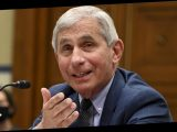The Real Reason Dr. Fauci Couldn't Appear On Rachel Maddow's Show