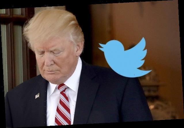 Calls for Twitter to Deactivate Trump's Account Grow Amid Capitol Riot
