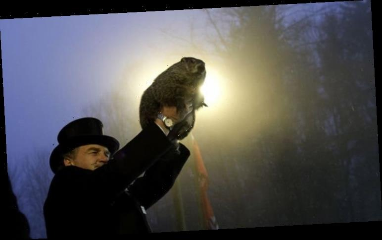 Groundhog Day 2021: Where is Gobbler's Knob? Where is Groundhog Day ceremony?