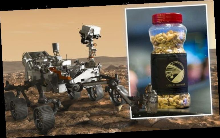 Mars landing: NASA controllers will gobble up 'lucky peanuts' in odd superstition today